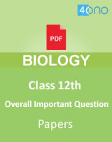 CBSE class 12 Overall Important Question papers