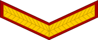indian army lance naik arm patch