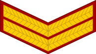 indian army naik arm patch